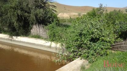 Le bassin d'irrigation situé en contrehaut des jardins